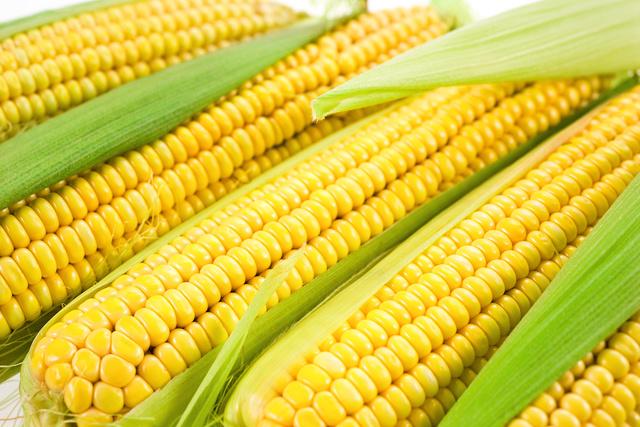 Как правильно готовить кукурузу