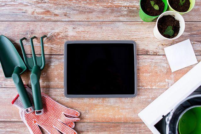 Вам понадобятся некоторые инструменты для домашнего садоводства: перчатки, небольшие лопатки, земля из магазина, горшки и различные баночки для рассады
