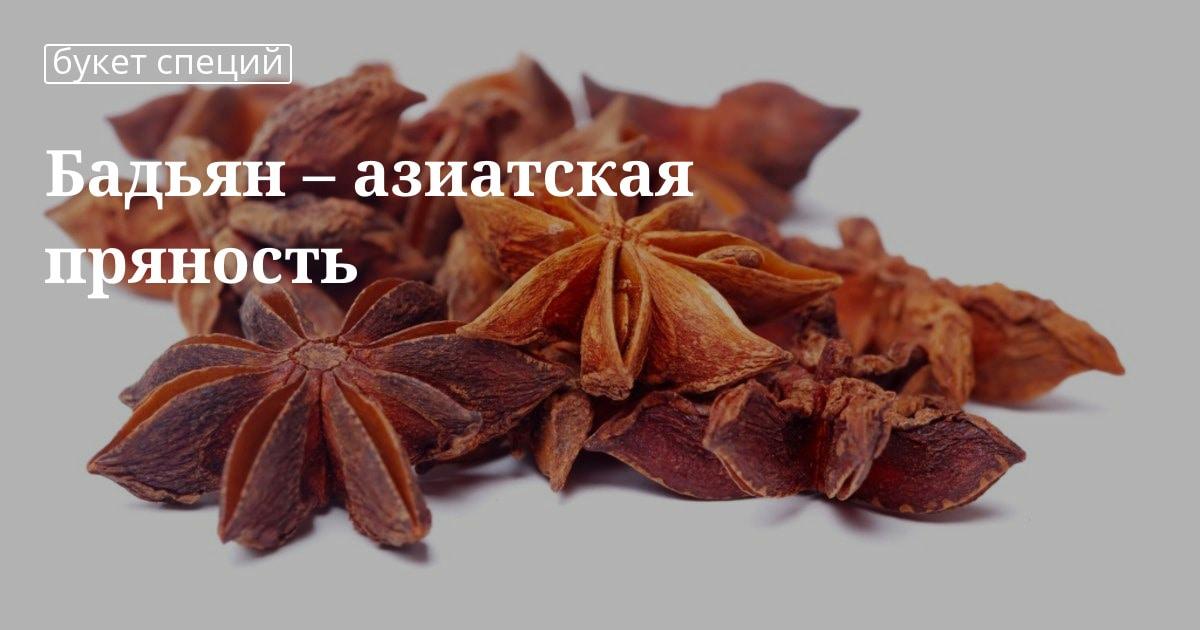 Бадьян – звездчатый анис, полезные свойства