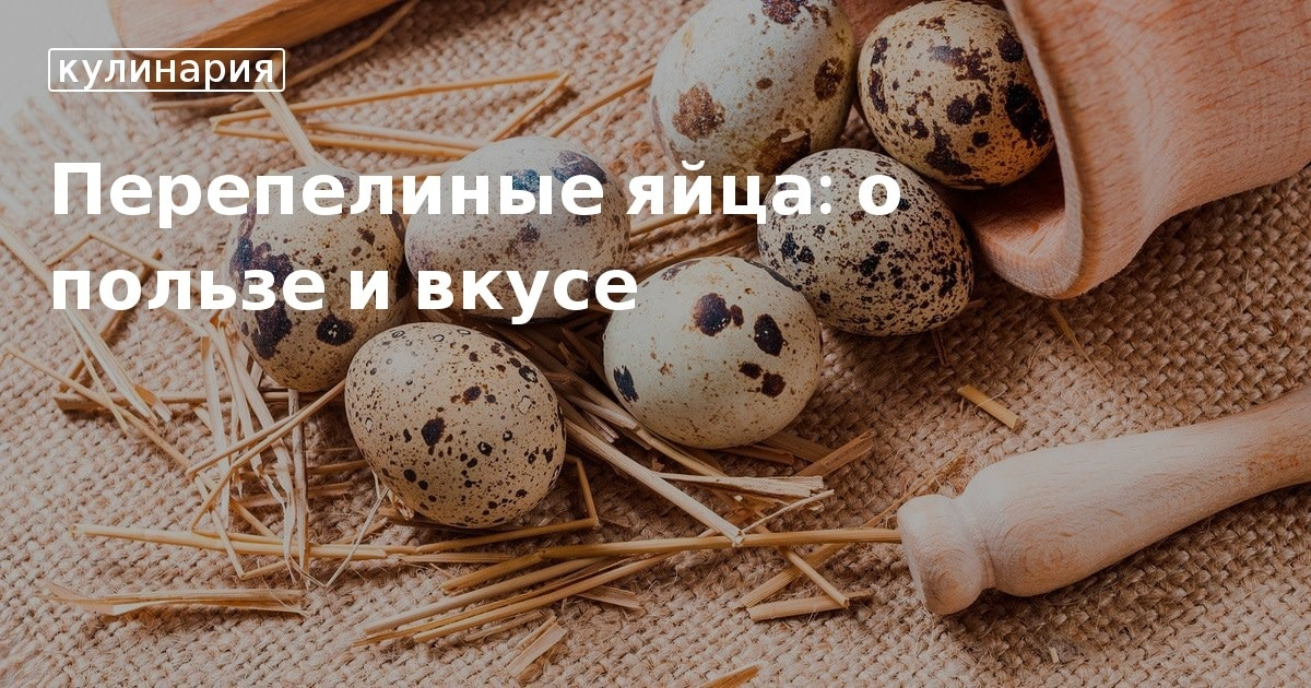 Можно ли есть перепелиные яйца сырыми и какая от них польза?