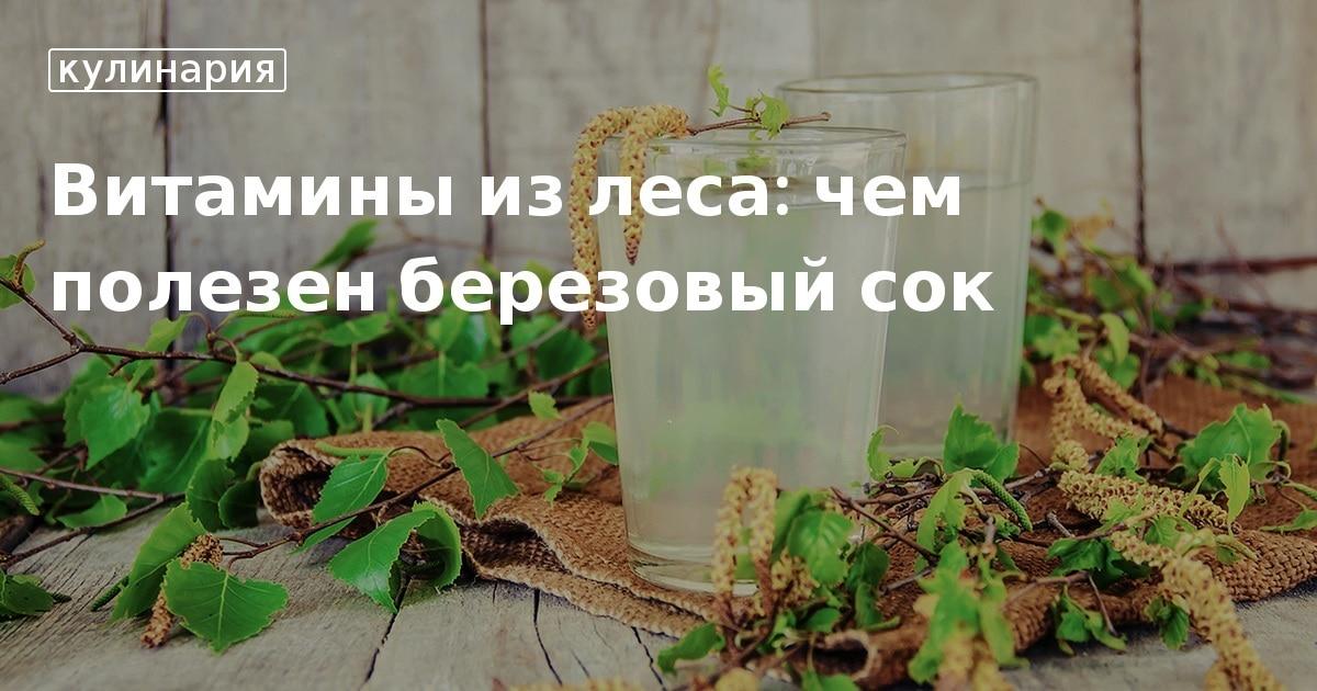 Березовый сок польза и вред, состав, полезные свойства, как собирать? - Огород, сад, балкон