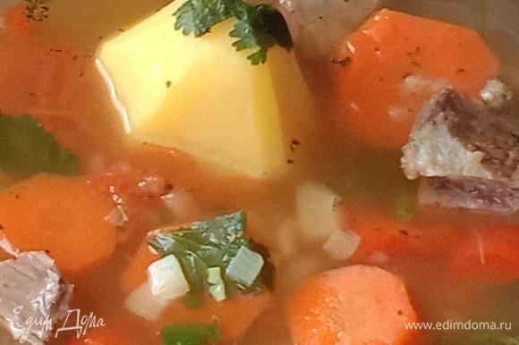 По окончании приготовления добавим свежую кинзу и петрушку. Суп должен настояться примерно 15 минут, затем подавайте к столу. Приятного аппетита!