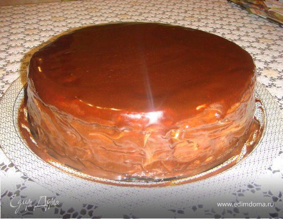 Как приготовить торт прага фото