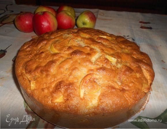 Шарлотка с яблоками рецепт пошагово в духовке со сметаной и 5 яйцах